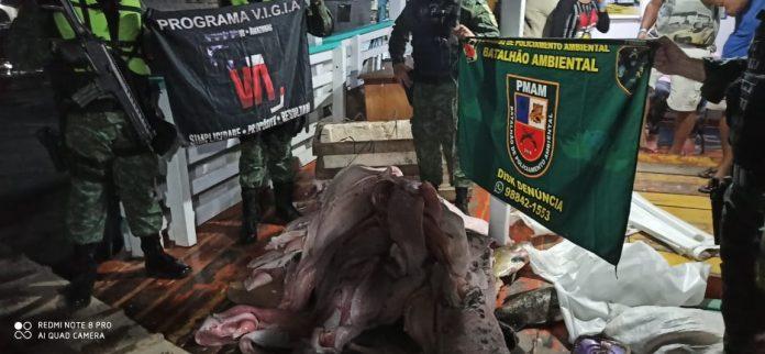 Carga ilegal de pescado e carne de animais silvestres é apreendida em embarcação