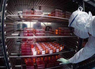 França espera vacinas contra covid-19 no fim do ano ou início de 2021