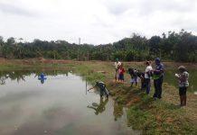 Governo do AM, por meio do Idam, capacita produtores rurais para atividade de piscicultura