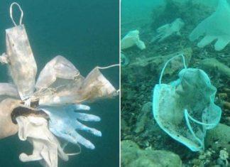 Mais de 1,5 bilhão de toneladas de máscaras acabaram no mar em 2020