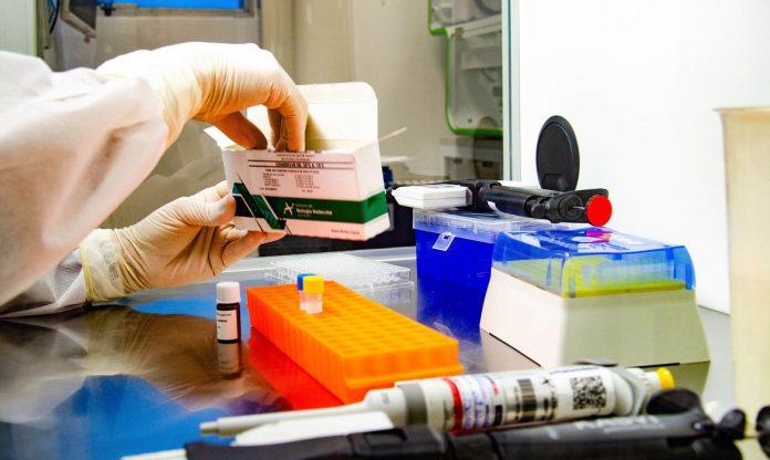 Brasil chega a 8,13 milhões de casos de covid-19 e tem 203,5 mil mortes