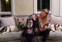 FBI investiga se roubo de cães de Lady Gaga tem motivação política