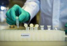 Taxa de infecção por covid-19 está próxima do valor mais alto, diz OMS